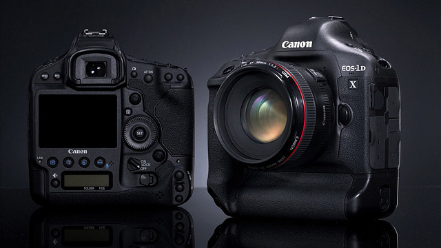 EOS 1DX field review and impressions
