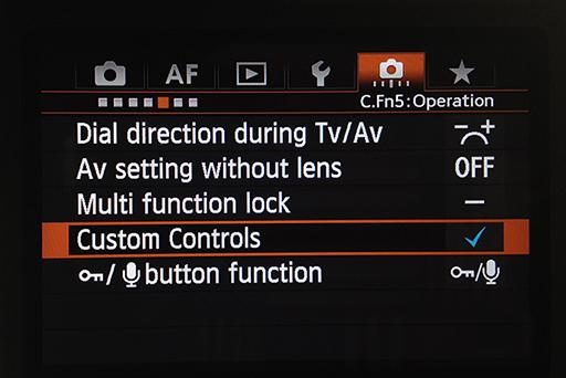 Camera custom controls