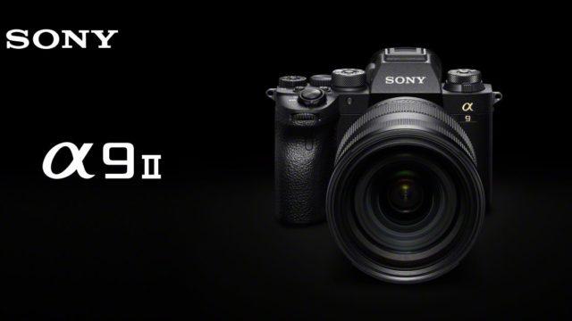Sony A9 II for BIF, initial impressions and comparison vs. Nikon/Canon